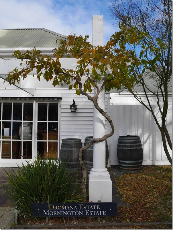 Cellar door entrance at Dromana Estate, Tuerong, Mornington Peninsula