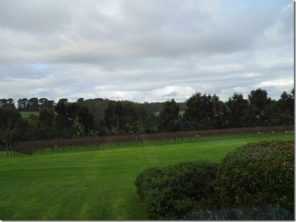 Vineyards at Ten Minutes By Tractor 1333 Mornington Flinders road Main Ridge, Mornington Peninsula, Victoria