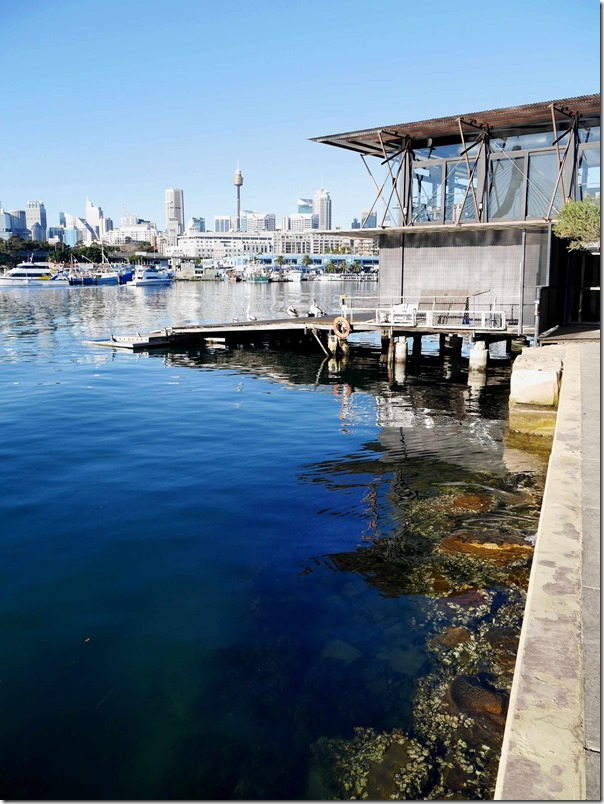 The Boathouse on Blackwattle Bay and Sydney city skyline