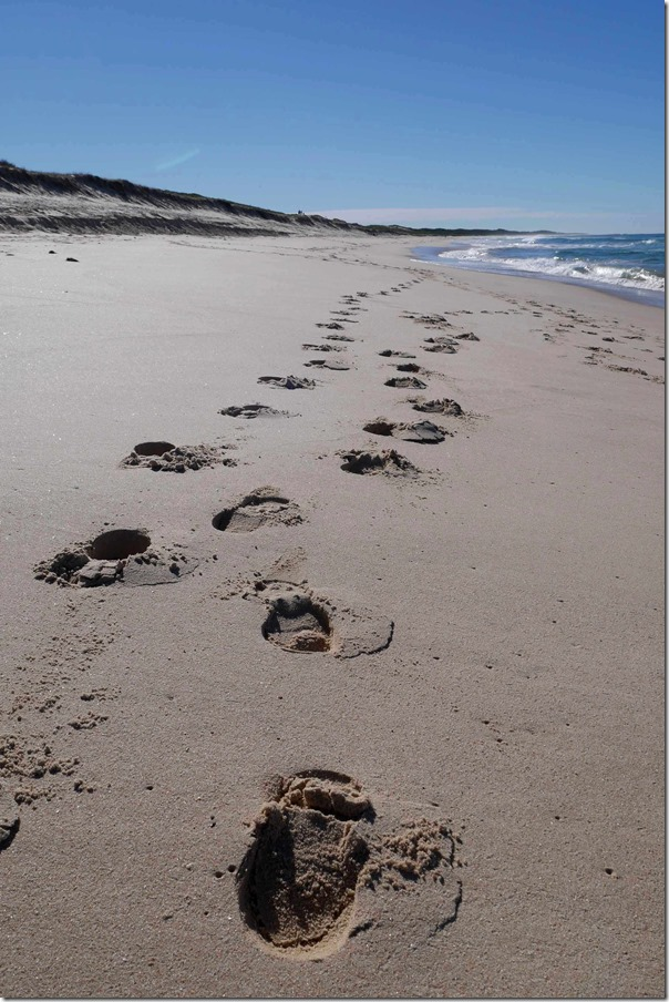 Footprints heading north on Tuggerah beach