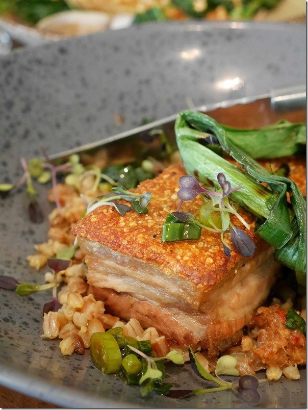 Roast pork belly, toasted barley, shallot dressing $33