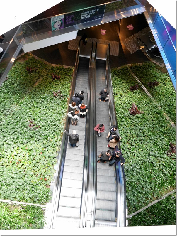 Escalators in shopping complex at One Central Park, Chippendale