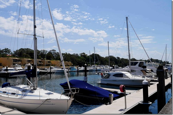 Sailboats at Woolloomooloo Bay