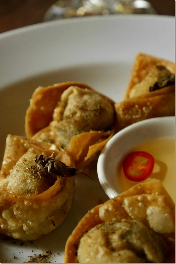 Roasted crickets and prawn wontons 4 pcs $19