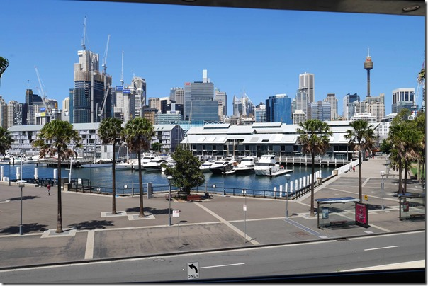 View of Pyrmont Bay from my table