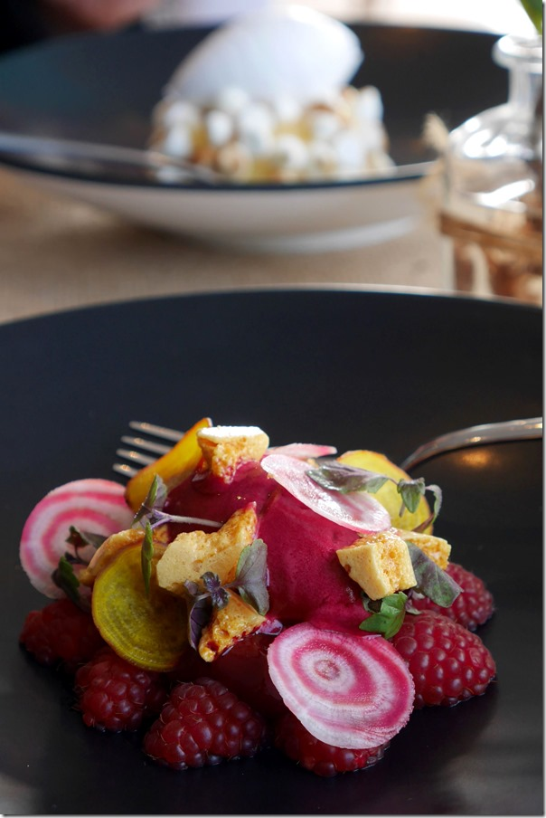 Raspberry salad, beetroot & raspberry sorbet, honeycomb, shiso gel