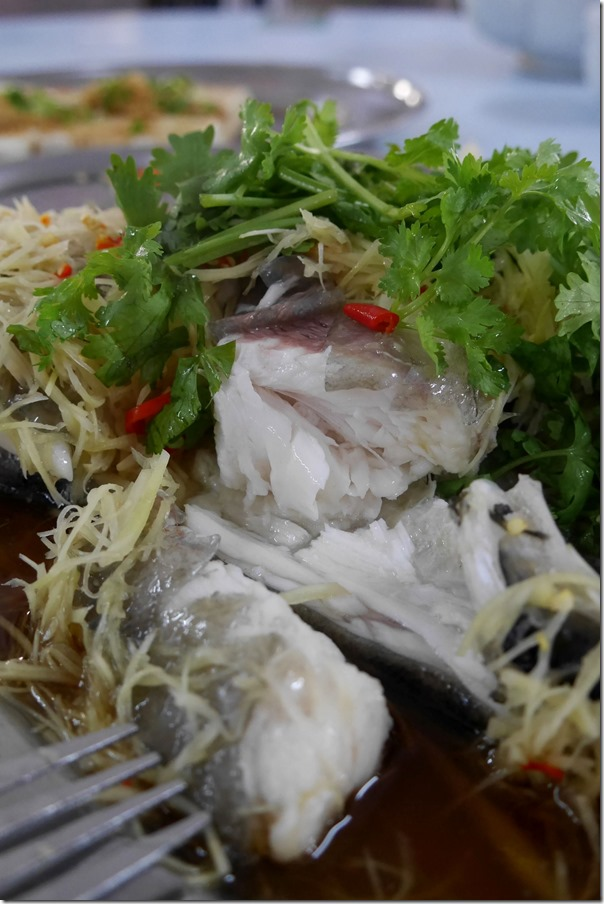 Chunks of succulent soong fish head with ginger and light soy sauce