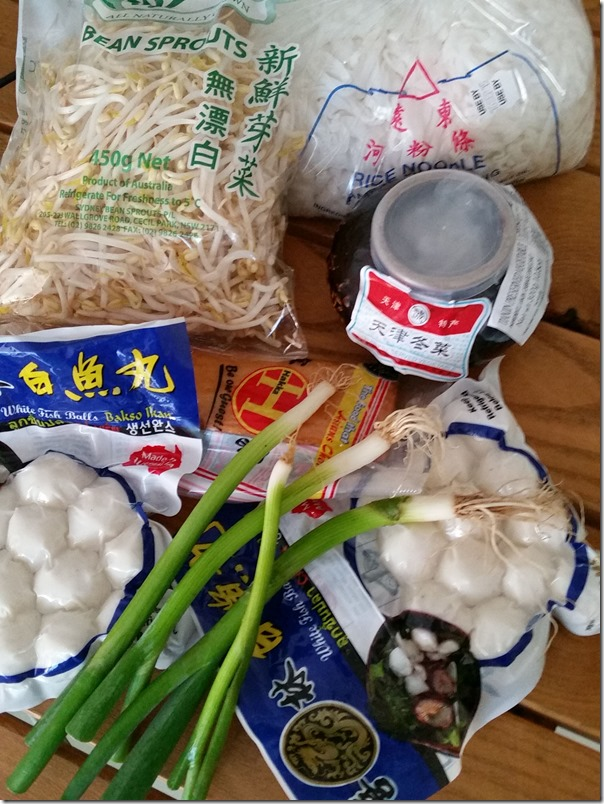 Key ingredients for Malaysian style fish ball noodles (Image taken with Samsung S5 mobile phone)