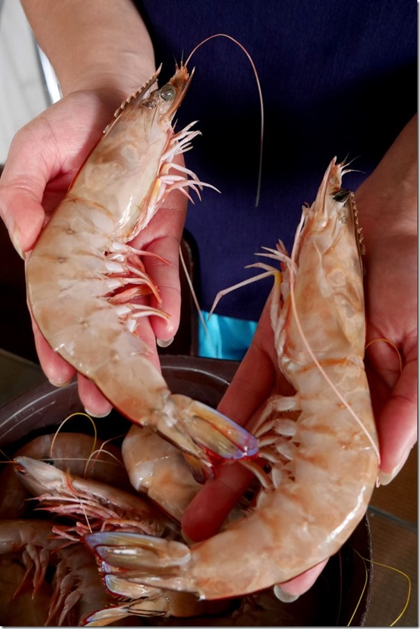 Fresh king prawns from Sydney Fish Market