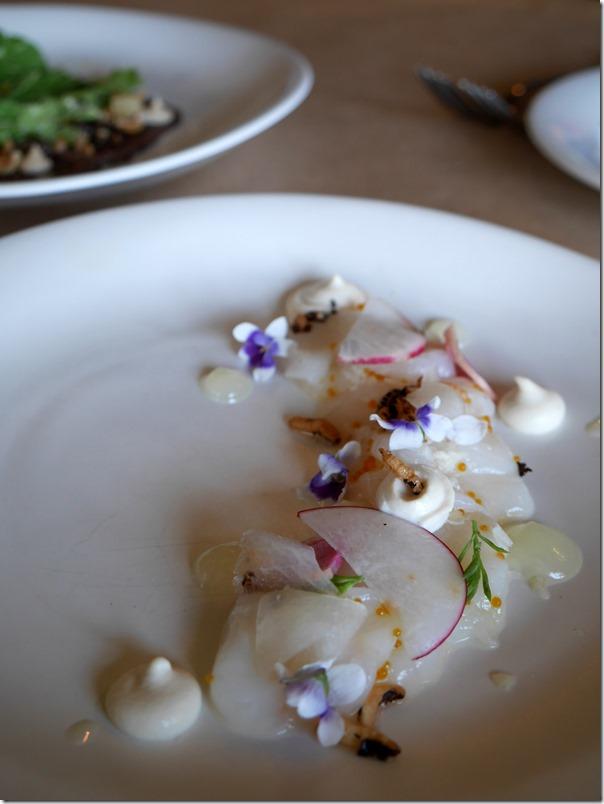 Cured Abrolhos Island scallops, macadamia, radish $20