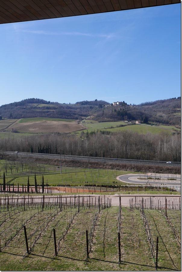 Vineyards at Antinori Nel Chianti Classico